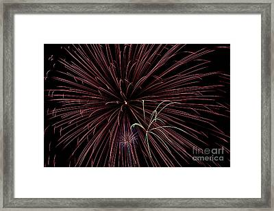 Fireworks Framed Print by Jason Meyer