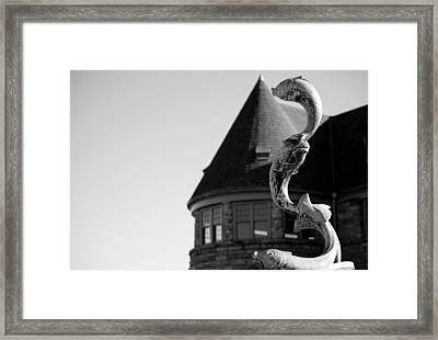 Fish Of The Sea Framed Print by Anne Babineau