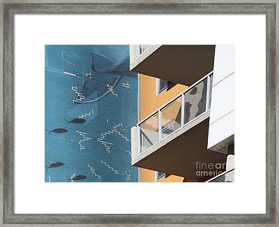 Fish Wall Framed Print by Jim Wright
