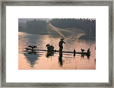 Fisherman Fishing With Cormorants Framed Print by Keren Su