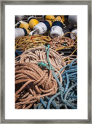 Fishing Floats And Rope Framed Print by Elena Elisseeva