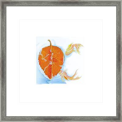 Fishsalad 5 Framed Print by Laura Dozor