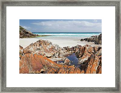 Flinders Chase National Park Framed Print by Martin Zwick