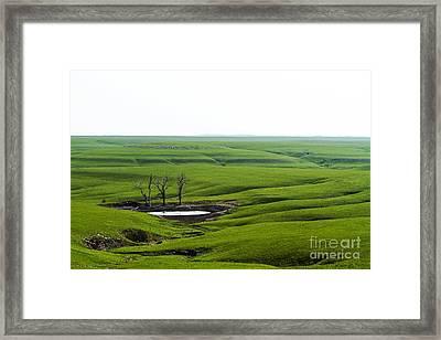 Flint Hills Spring Framed Print