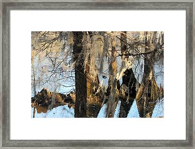 Flint River 36 Framed Print