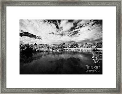 Flooded Grasslands And Mangrove Forest In The Florida Everglades Usa Framed Print by Joe Fox