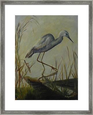 Florida Native Bird On A Fall Morning Framed Print