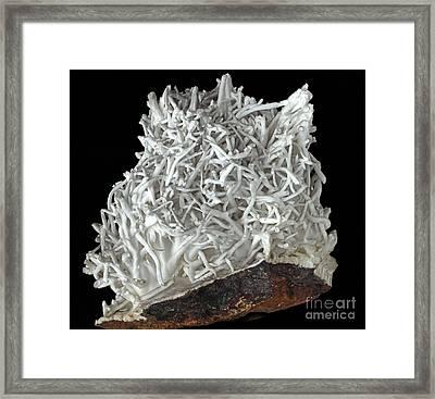 Flos-ferri Aragonite Framed Print