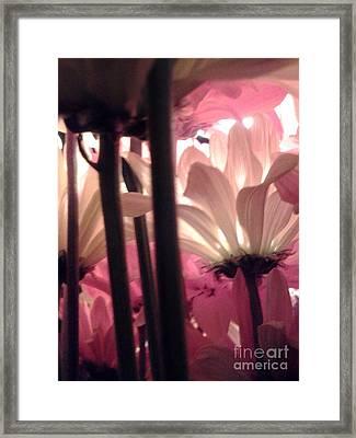 Flowerlife2 Framed Print
