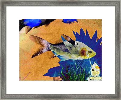 Flowers And Fins Framed Print by Lenore Senior