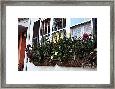 Flowers In The Window Framed Print by John Rizzuto