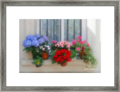 Flowers On A Windowsill In Paris Framed Print by Louise Heusinkveld