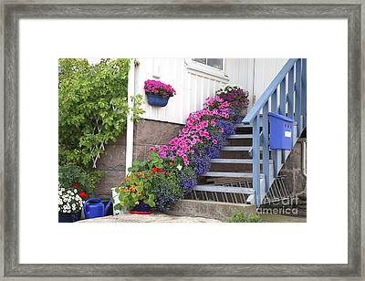 Flowers On Porch Stairs Framed Print by Bjorn Svensson
