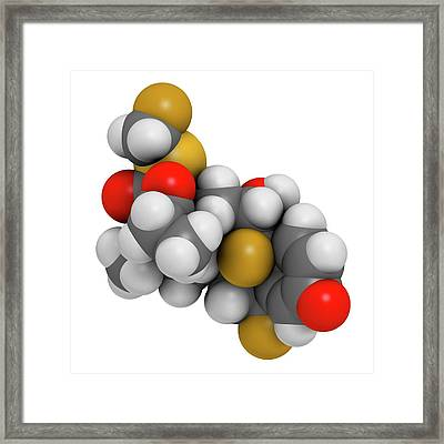 Fluticasone Corticosteroid Drug Molecule Framed Print by Molekuul