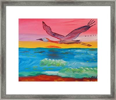 Flying Free Framed Print