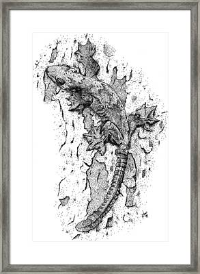 Flying Gecko Framed Print by Roger Hall