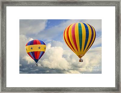 Flying High Framed Print by Brenda Giasson