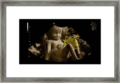 Foetus In The Womb Framed Print