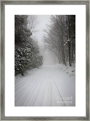 Foggy Winter Road Framed Print by Elena Elisseeva