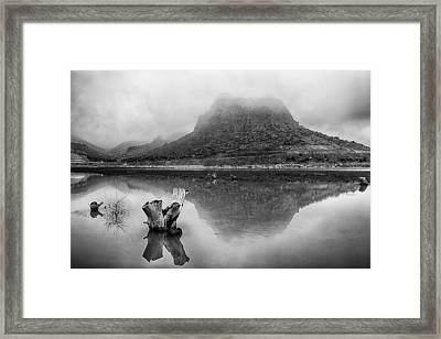 Framed Print featuring the photograph Fogy Morning by Okan YILMAZ