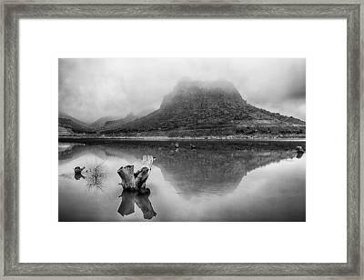 Fogy Morning Framed Print