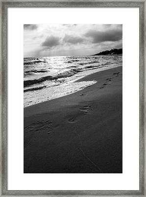 Footprints In The Sand Framed Print by Shelby  Young