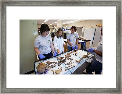Forensic Scientists Identifying Remains Framed Print