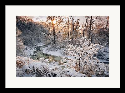 Snowy Brook Framed Prints