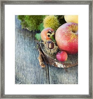 Forest Fruit Framed Print by Mythja  Photography