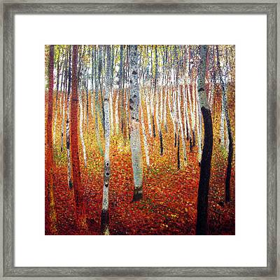 Forest Of Beech Trees Framed Print