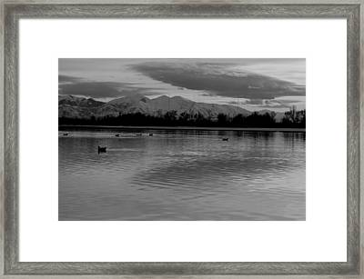 Forgotten Framed Print by Robert Reese