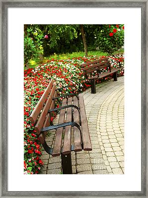 Formal Garden Framed Print by Elena Elisseeva