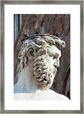 Fountain Of Neptune (biancone Framed Print
