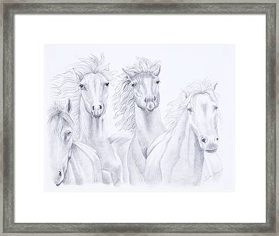 Four For Freedom Framed Print