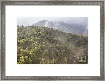 Franconia Notch State Park - White Mountains Nh Usa Framed Print