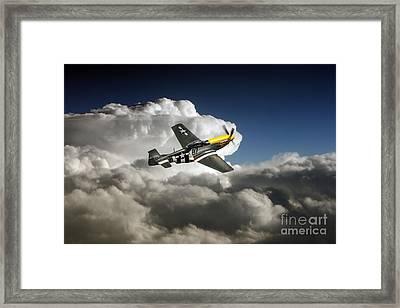 Frankie  Framed Print by J Biggadike