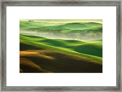 Freedom.... Framed Print