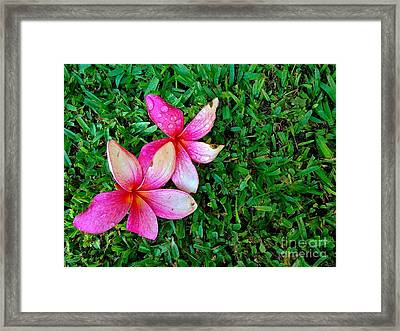 French Penny Framed Print by Bobby Mandal