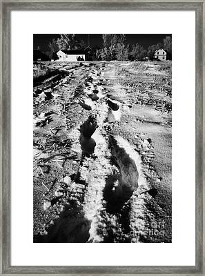 fresh footprints crossing deep snow in field towards small rural village of Forget Saskatchewan Cana Framed Print