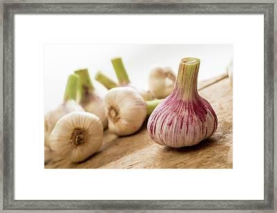 Fresh Garlic Framed Print