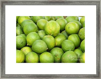 Fresh Green Lemons Framed Print by Yali Shi