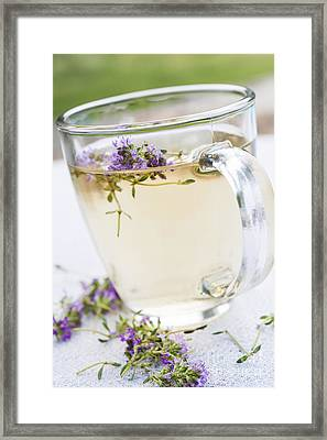 Fresh Thyme Tea Framed Print by Elena Elisseeva