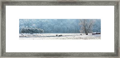 Frosty Morning Framed Print by Bill Wakeley