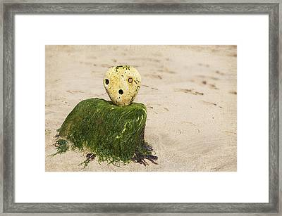 Frozen In Time Framed Print by Svetlana Sewell