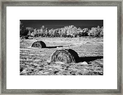 frozen snow covered hay bales in a field Forget Saskatchewan Canada Framed Print by Joe Fox