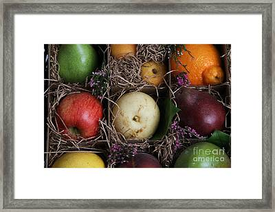Fruit Basket Framed Print by Photo Researchers, Inc.