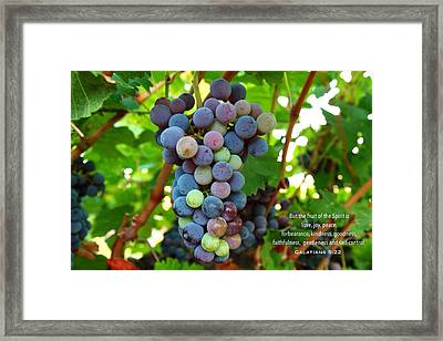 Fruit Of The Spirit Framed Print by Lynn Hopwood