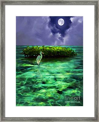 Full Moon Fishing Framed Print by David  Van Hulst
