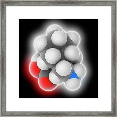 Gabapentin Drug Molecule Framed Print by Laguna Design