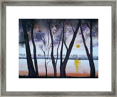 Gallinas Creek Framed Print